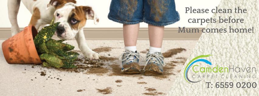 3 naughty dog - context marketing images